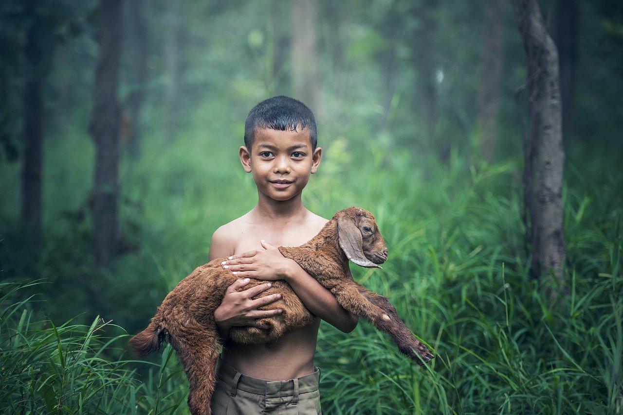 boys, outdoor, thailand